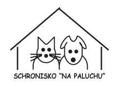 paluch_www